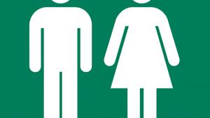 イタリア語の基礎、男性名詞と女性名詞の見分け方
